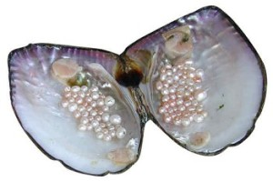 freshwater_pearls1